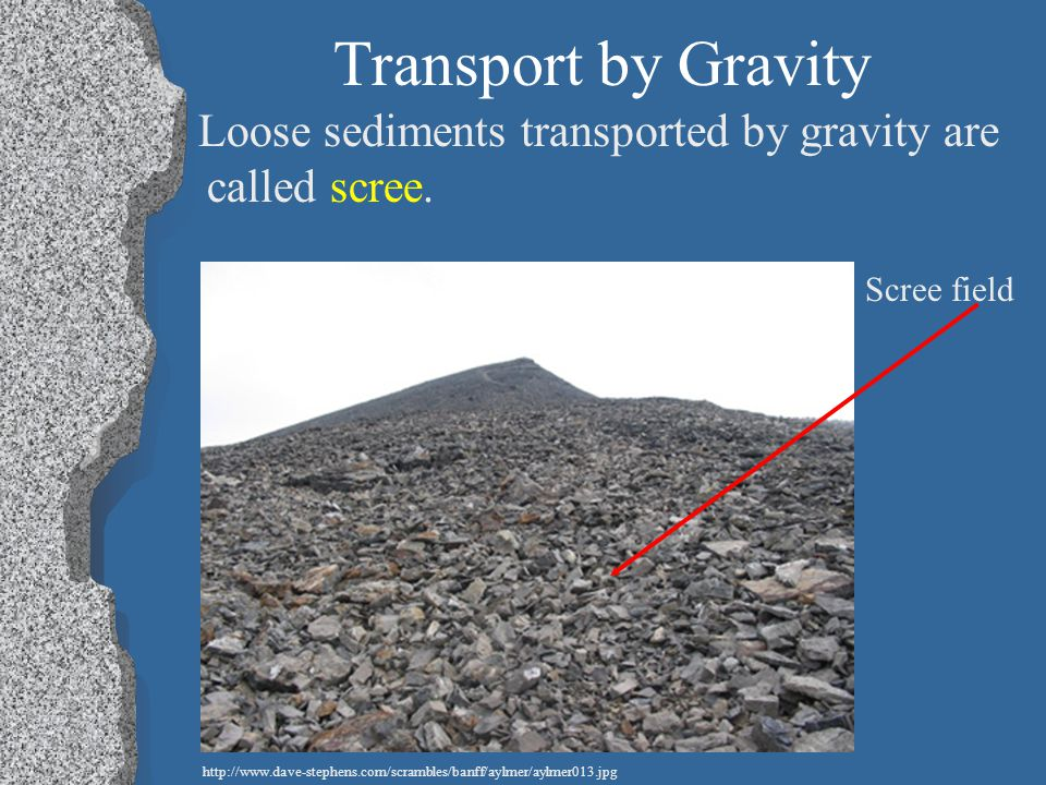 Transport by Gravity Loose sediments transported by gravity are called scree. Scree field.