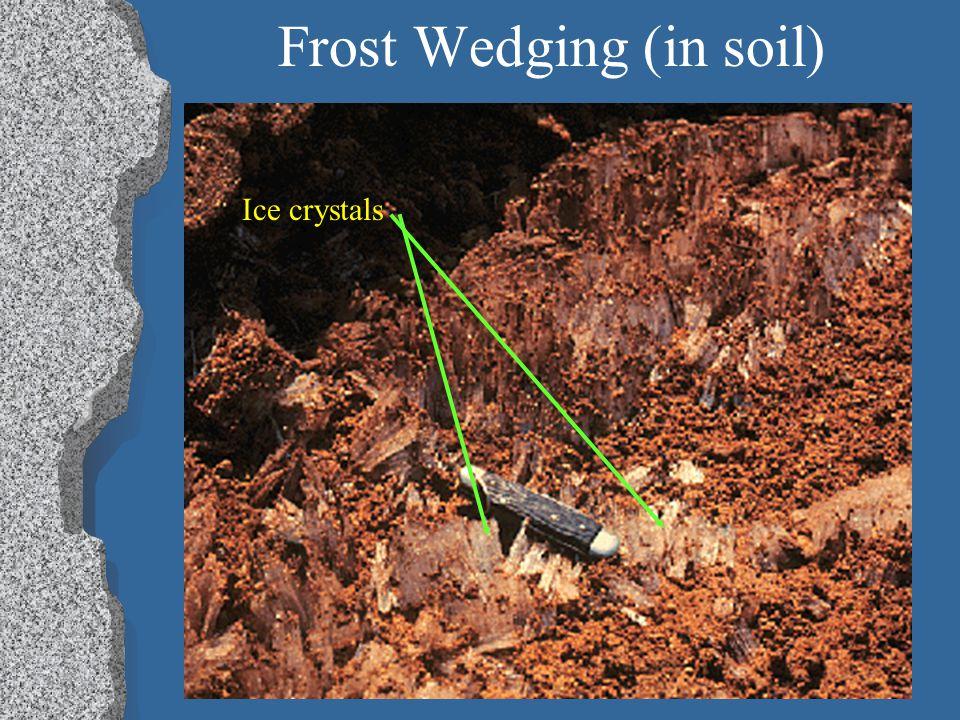 Frost Wedging (in soil)
