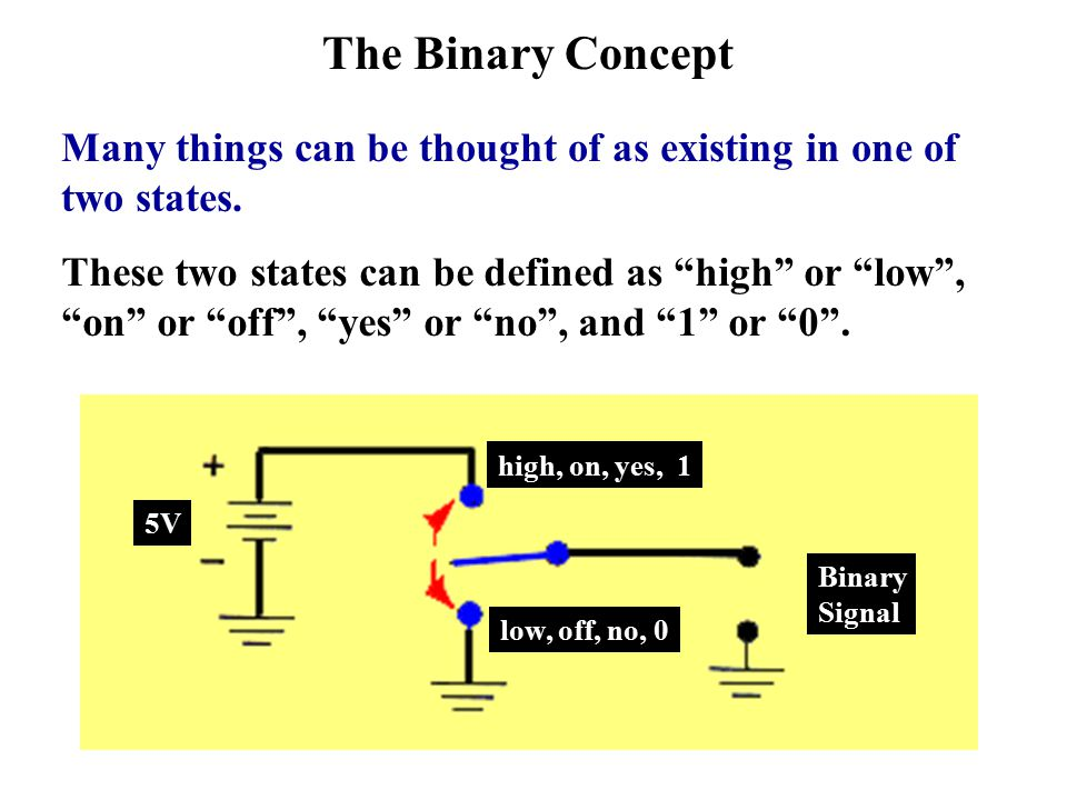 The Binary Concept Many things can be thought of as existing in one of