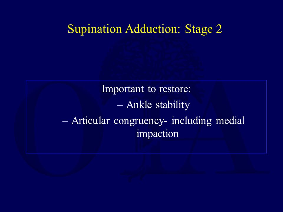 Supination Adduction: Stage 2