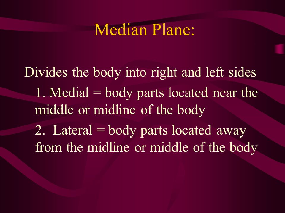 Median Plane: Divides the body into right and left sides