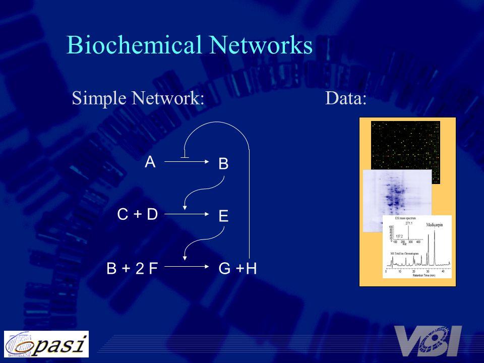 Biochemical Networks Simple Network: Data: A B C + D E B + 2 F G + H