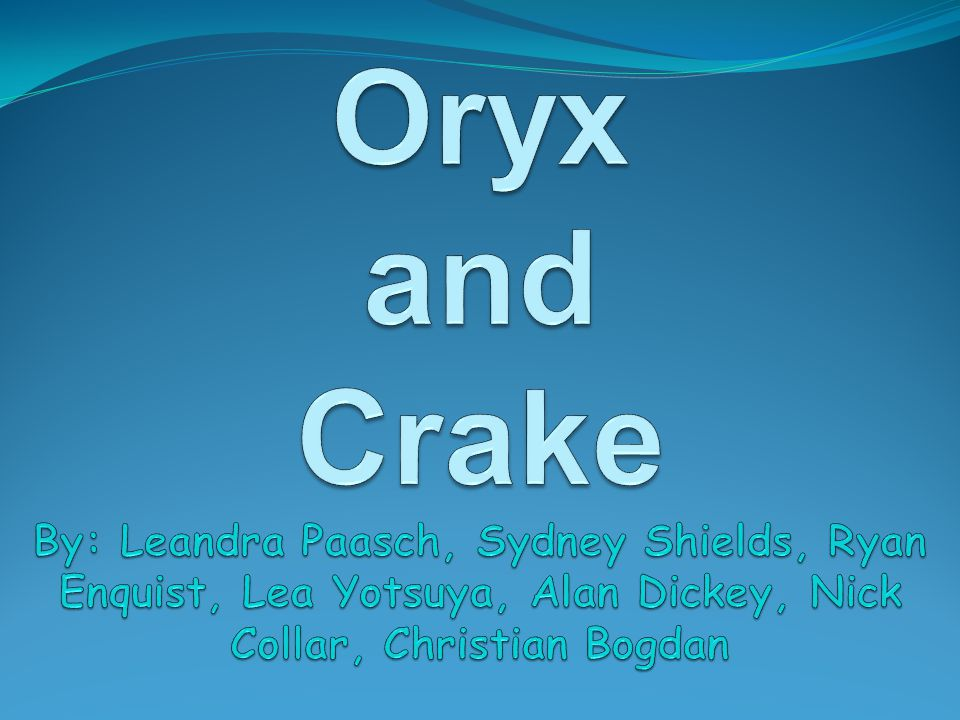 Oryx and Crake By: Leandra Paasch, Sydney Shields, Ryan Enquist, Lea Yotsuya, Alan Dickey, Nick Collar, Christian Bogdan