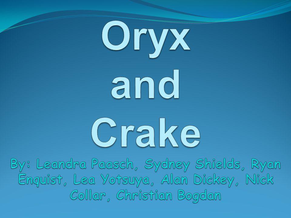 Oryx and Crake By: Leandra Paasch, Sydney Shields, Ryan Enquist, Lea Yotsuya, Alan Dickey, Nick Collar, Christian Bogdan