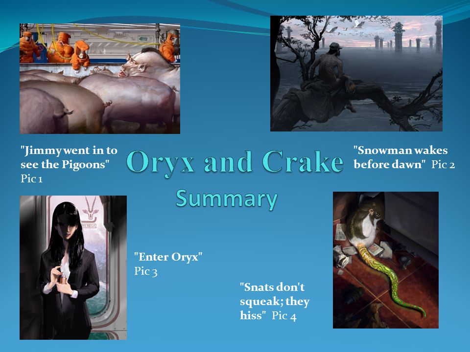 Oryx and Crake Summary Jimmy went in to see the Pigoons Pic 1