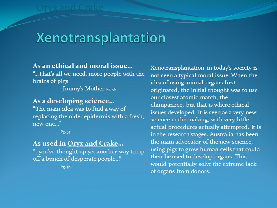 Xenotransplantation Oryx and Crake As an ethical and moral issue…