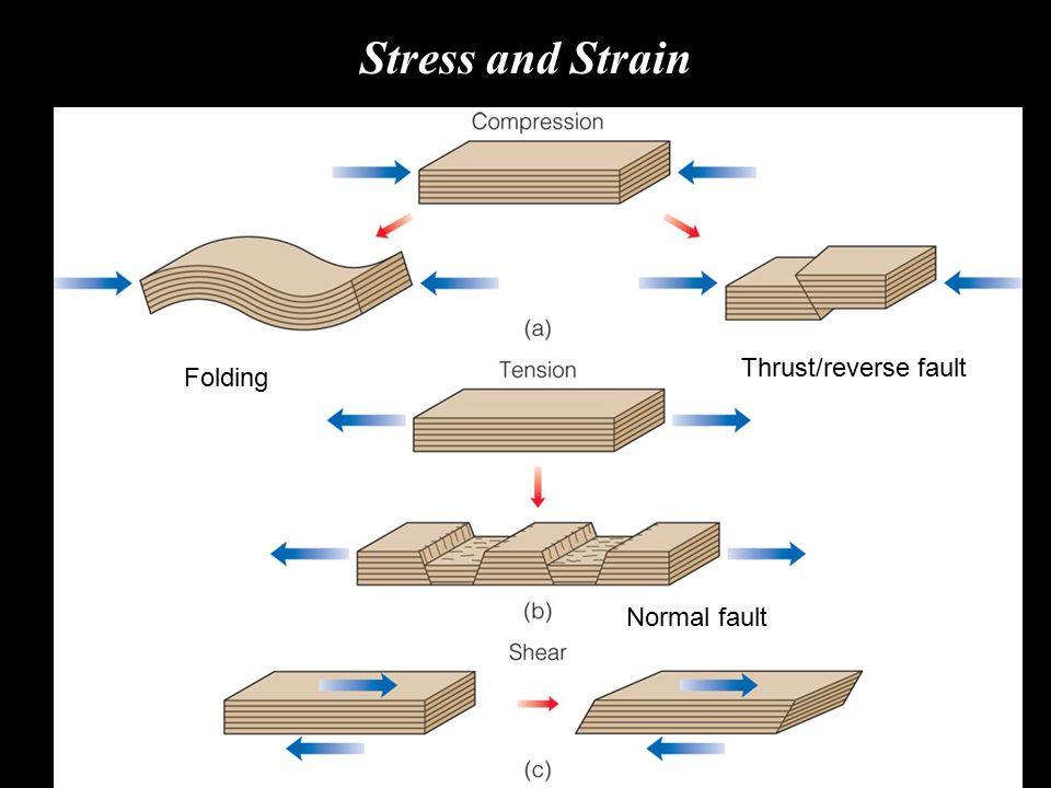 Stress and Strain Thrust/reverse fault Folding Normal fault