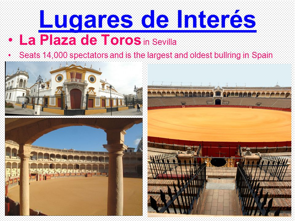 Lugares de Interés La Plaza de Toros in Sevilla