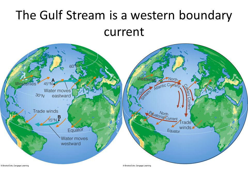 The Gulf Stream is a western boundary current
