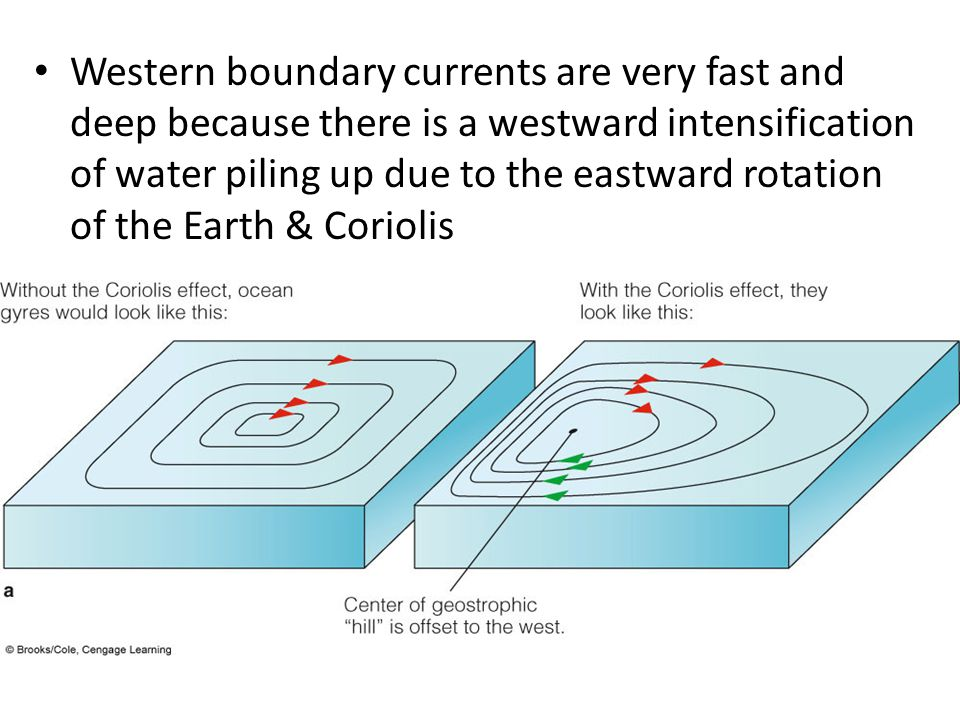Western boundary currents are very fast and deep because there is a westward intensification of water piling up due to the eastward rotation of the Earth & Coriolis