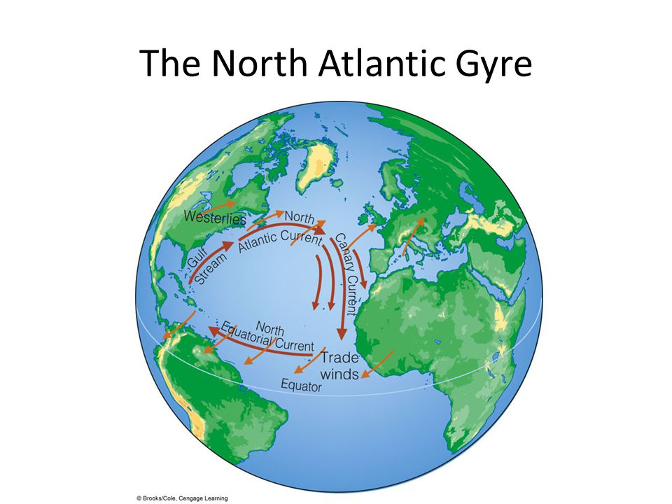 The North Atlantic Gyre
