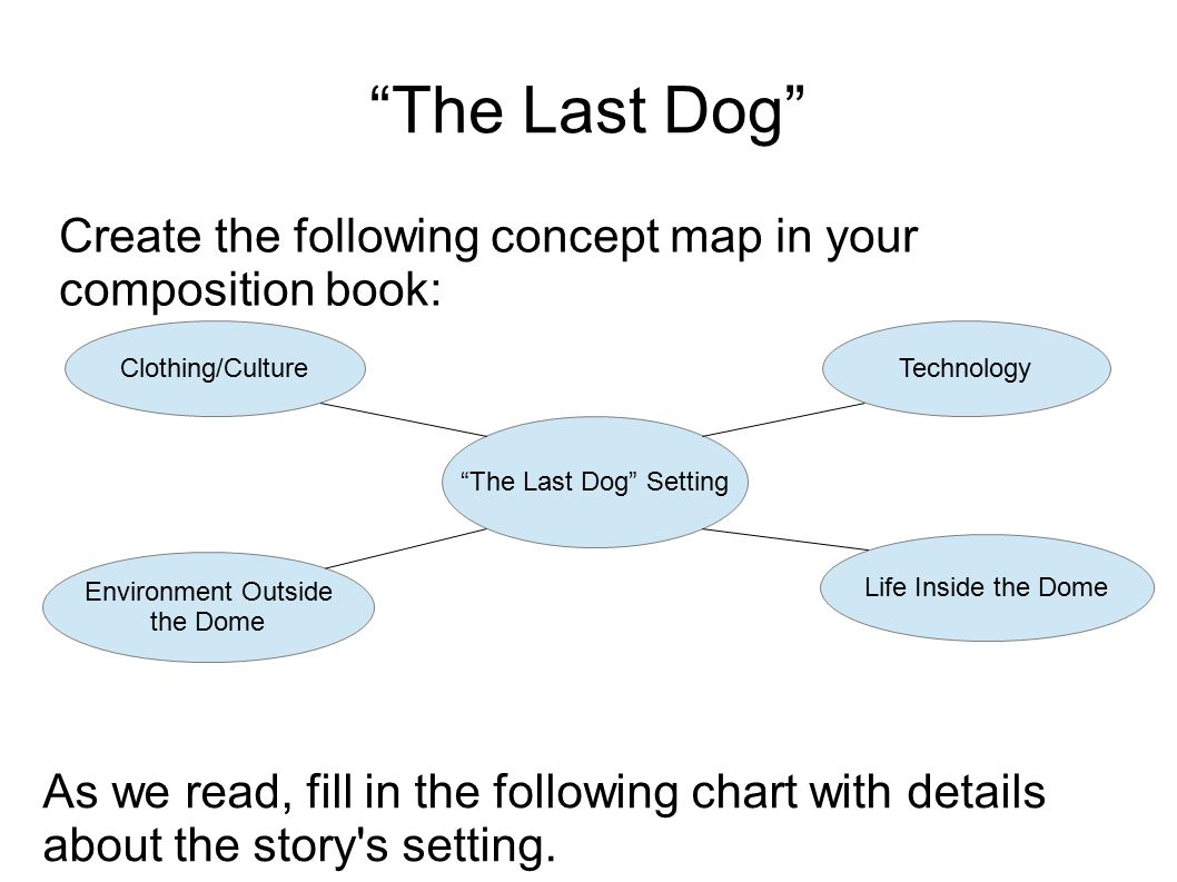 Create the following concept map in your composition book: