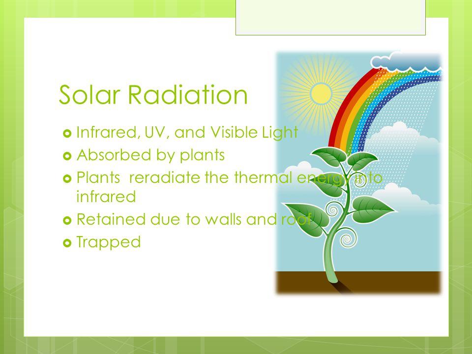 Solar Radiation Infrared, UV, and Visible Light Absorbed by plants
