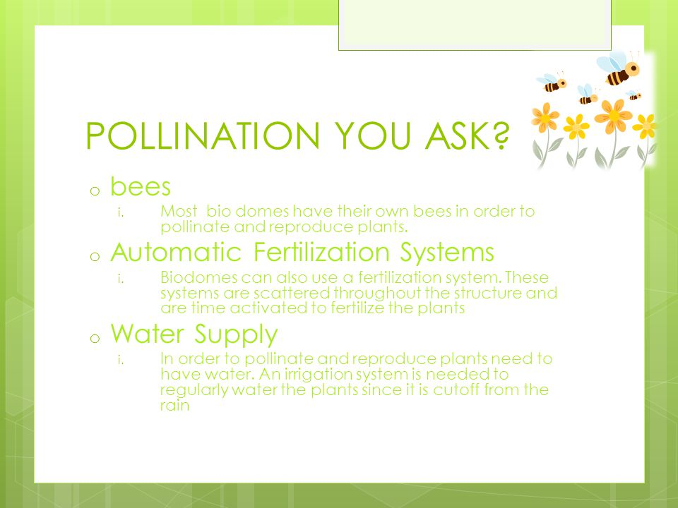 POLLINATION YOU ASK bees Automatic Fertilization Systems Water Supply