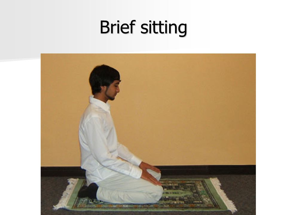 Brief sitting