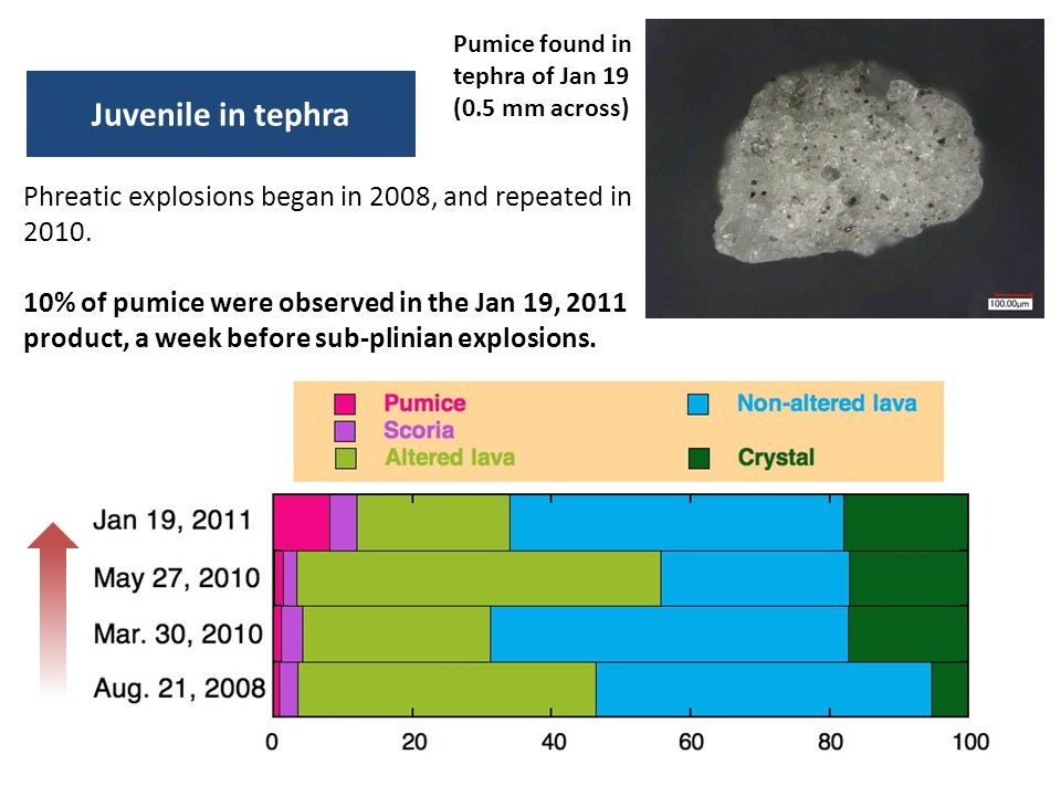 Pumice found in tephra of Jan 19 (0.5 mm across)