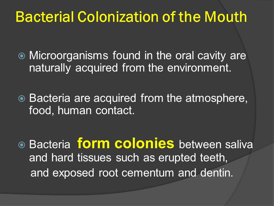 Bacterial Colonization of the Mouth