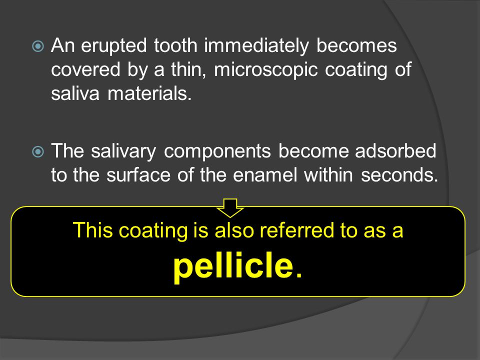 This coating is also referred to as a pellicle.