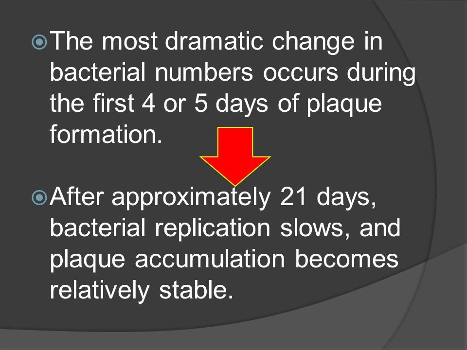 The most dramatic change in bacterial numbers occurs during the first 4 or 5 days of plaque formation.