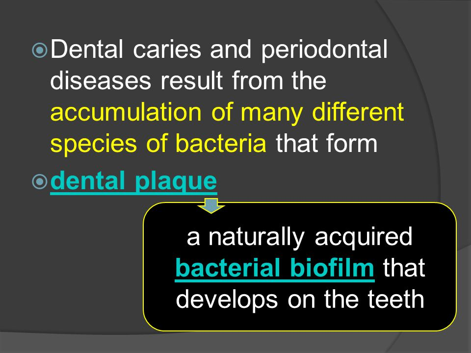a naturally acquired bacterial biofilm that develops on the teeth