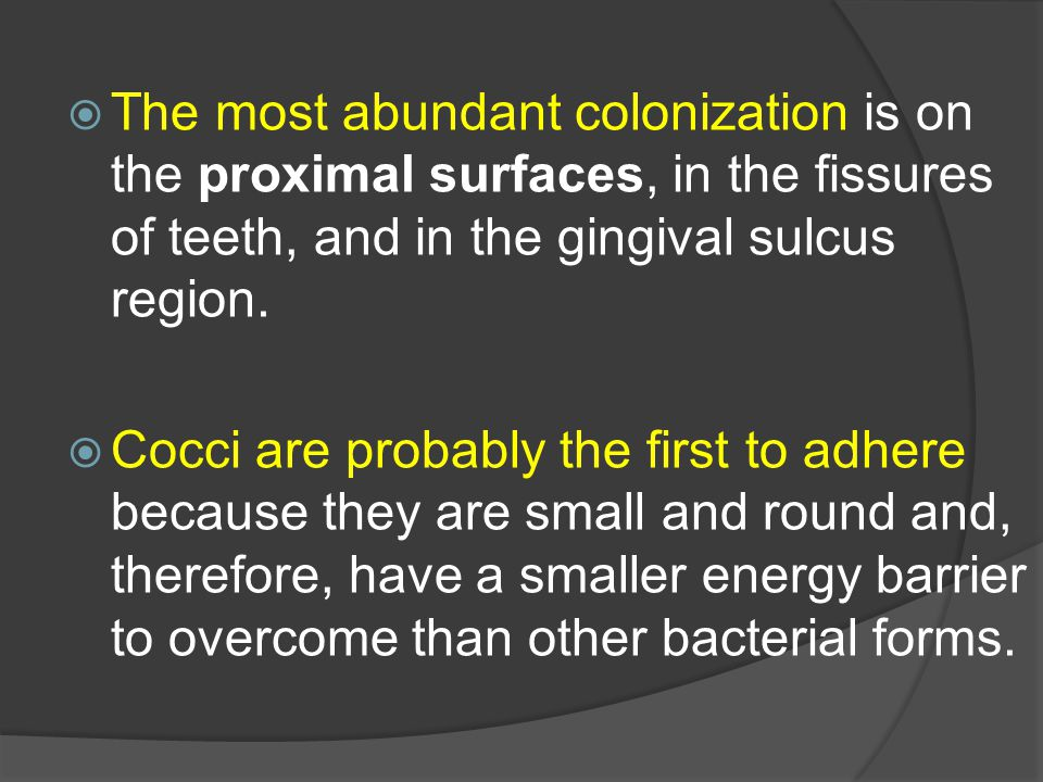 Тhe most abundant colonization is on the proximal surfaces, in the fissures of teeth, and in the gingival sulcus region.