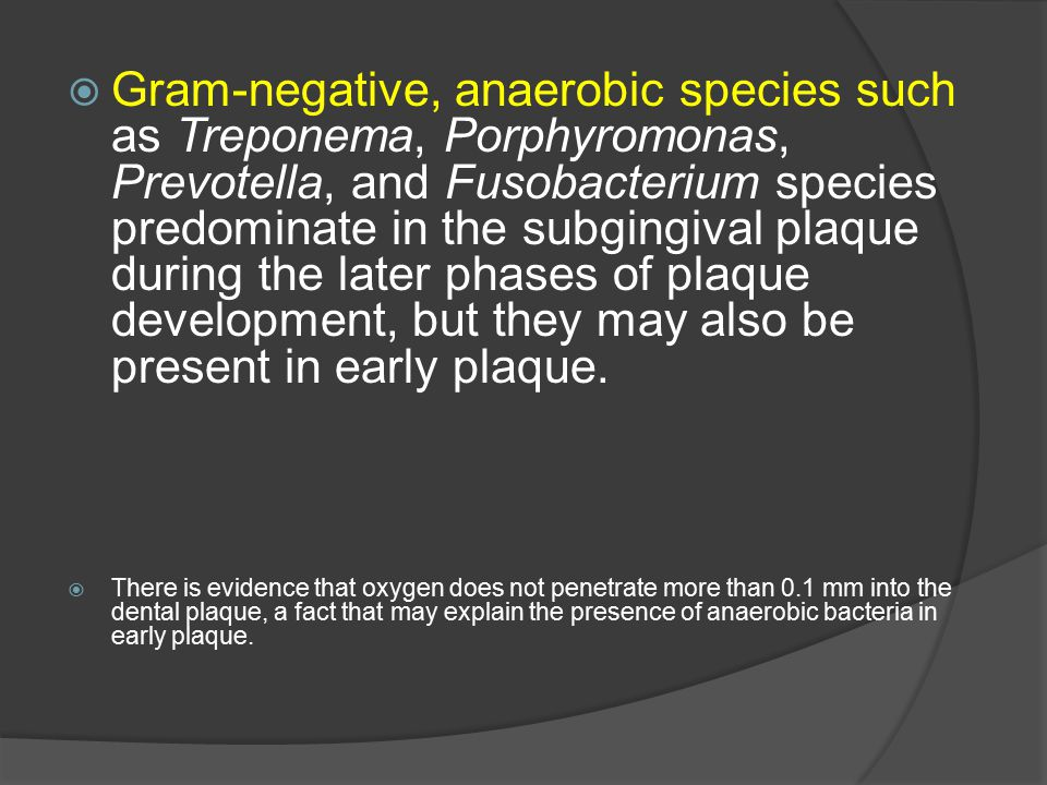 Gram-negative, anaerobic species such as Treponema, Porphyromonas, Prevotella, and Fusobacterium species predominate in the subgingival plaque during the later phases of plaque development, but they may also be present in early plaque.