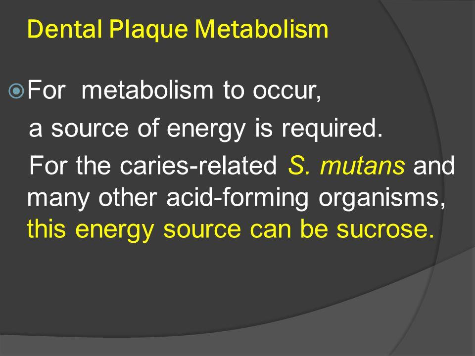 Dental Plaque Metabolism