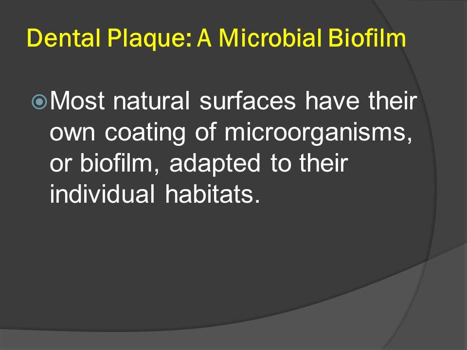 Dental Plaque: A Microbial Biofilm