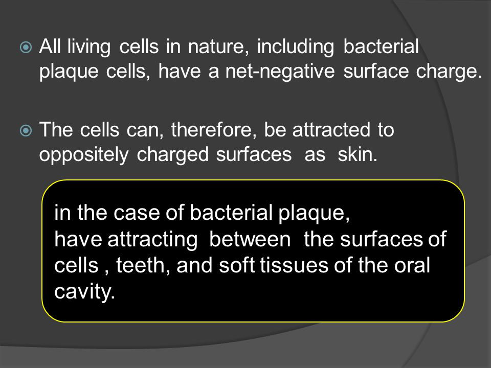 in the case of bacterial plaque,