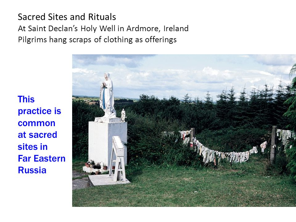Sacred Sites and Rituals At Saint Declan's Holy Well in Ardmore, Ireland Pilgrims hang scraps of clothing as offerings