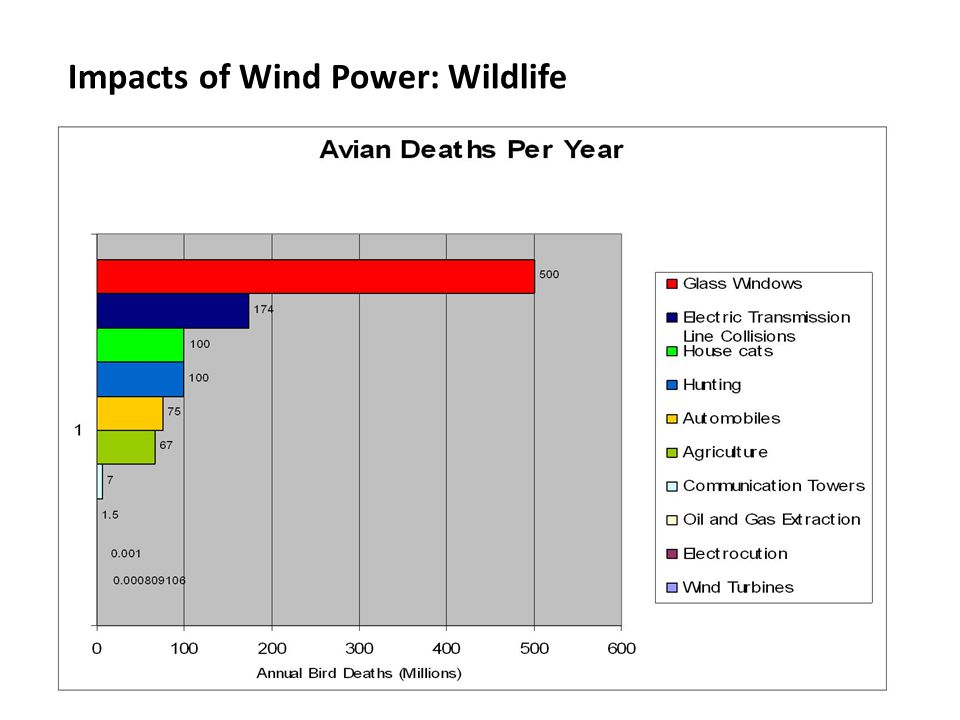 Impacts of Wind Power: Wildlife