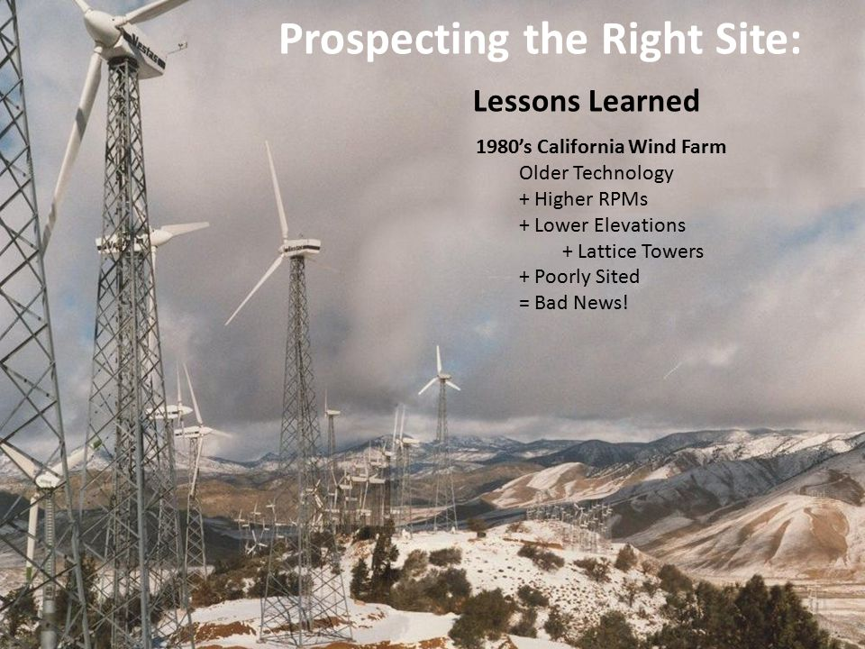 Prospecting the Right Site: Lessons Learned