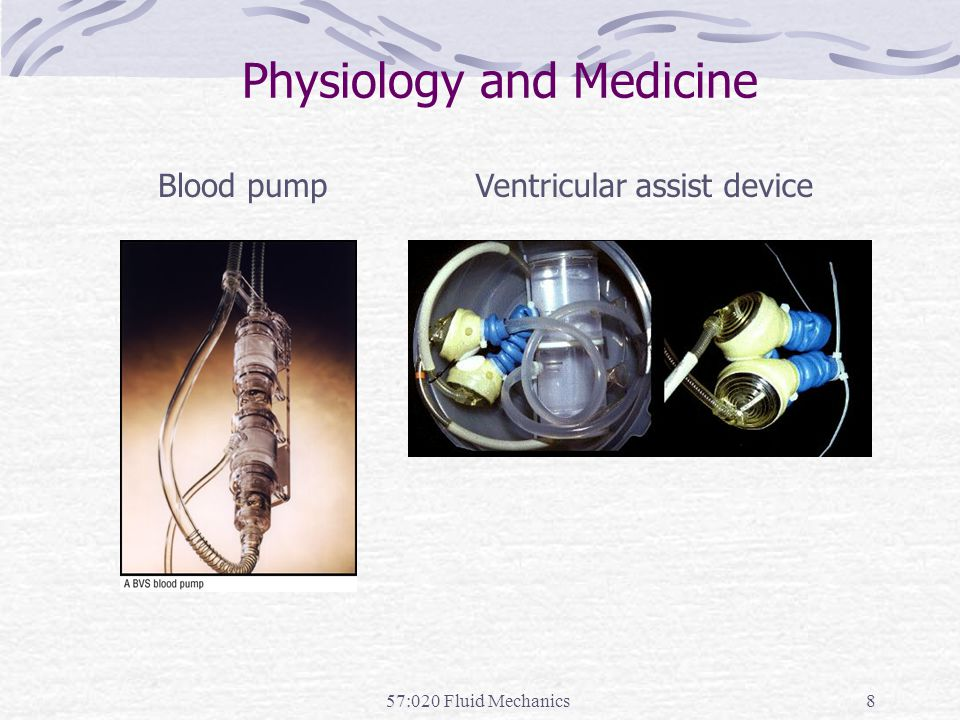 Physiology and Medicine