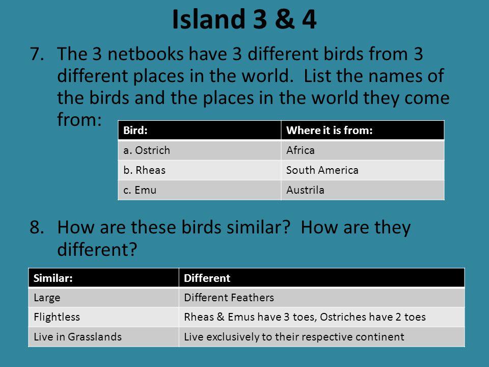 Island 3 & 4