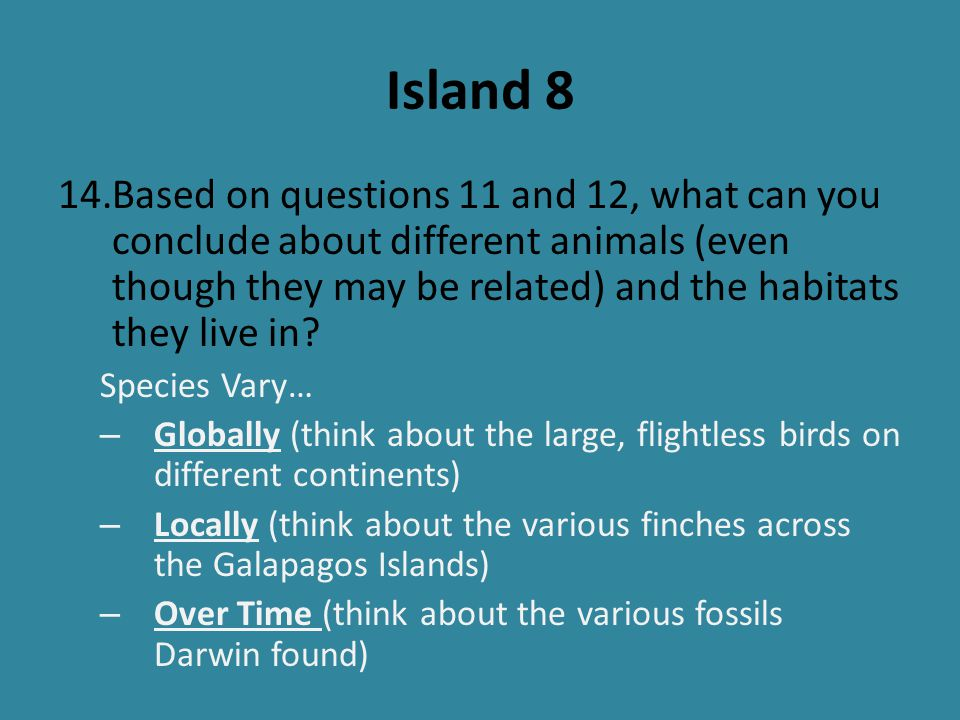 Island 8 Based on questions 11 and 12, what can you conclude about different animals (even though they may be related) and the habitats they live in