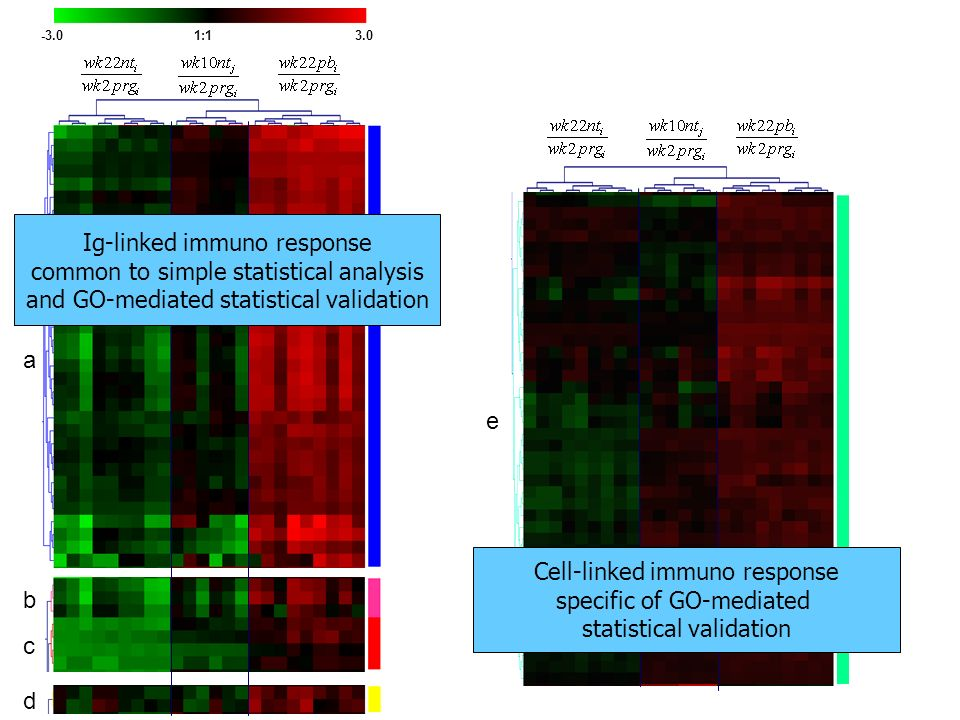 Ig-linked immuno response common to simple statistical analysis