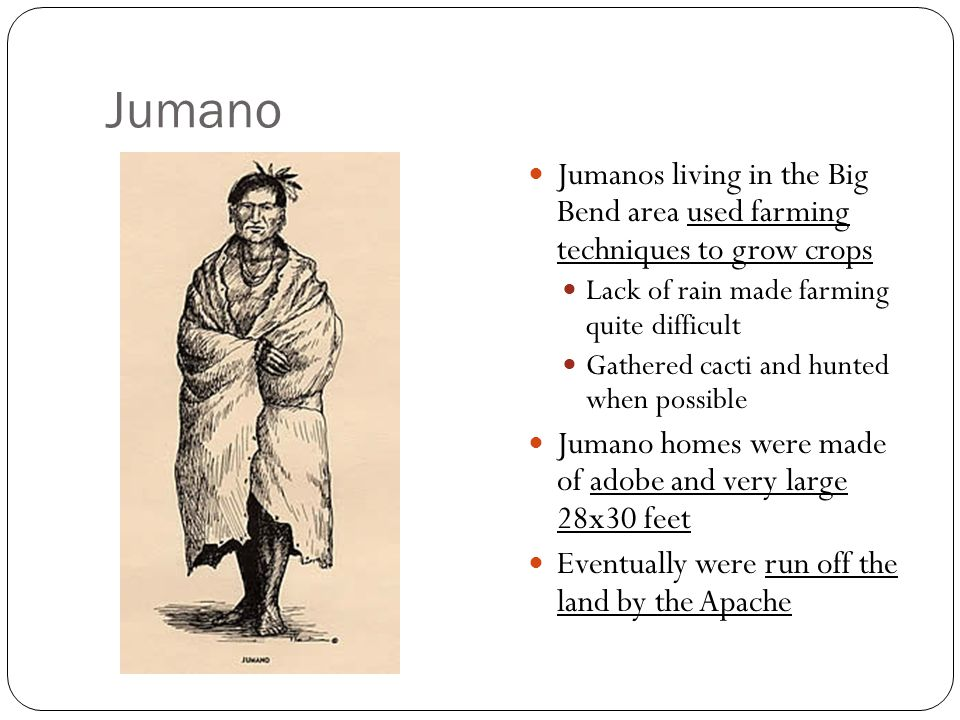 Jumano Jumanos living in the Big Bend area used farming techniques to grow crops. Lack of rain made farming quite difficult.