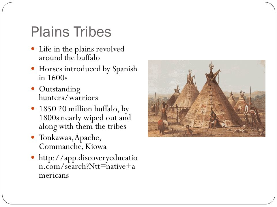 Plains Tribes Life in the plains revolved around the buffalo