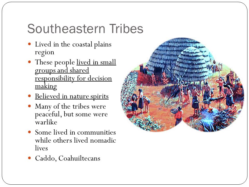 Southeastern Tribes Lived in the coastal plains region
