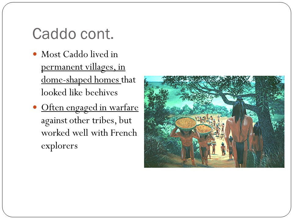 Caddo cont. Most Caddo lived in permanent villages, in dome-shaped homes that looked like beehives.