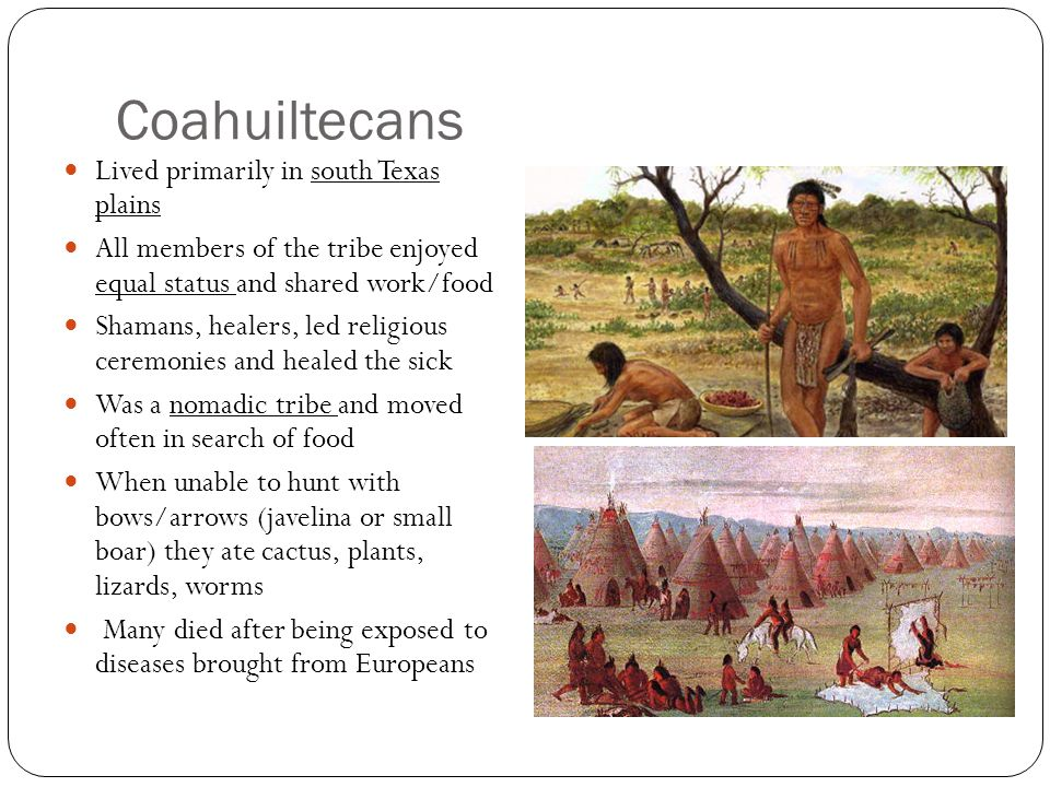 Coahuiltecans Lived primarily in south Texas plains