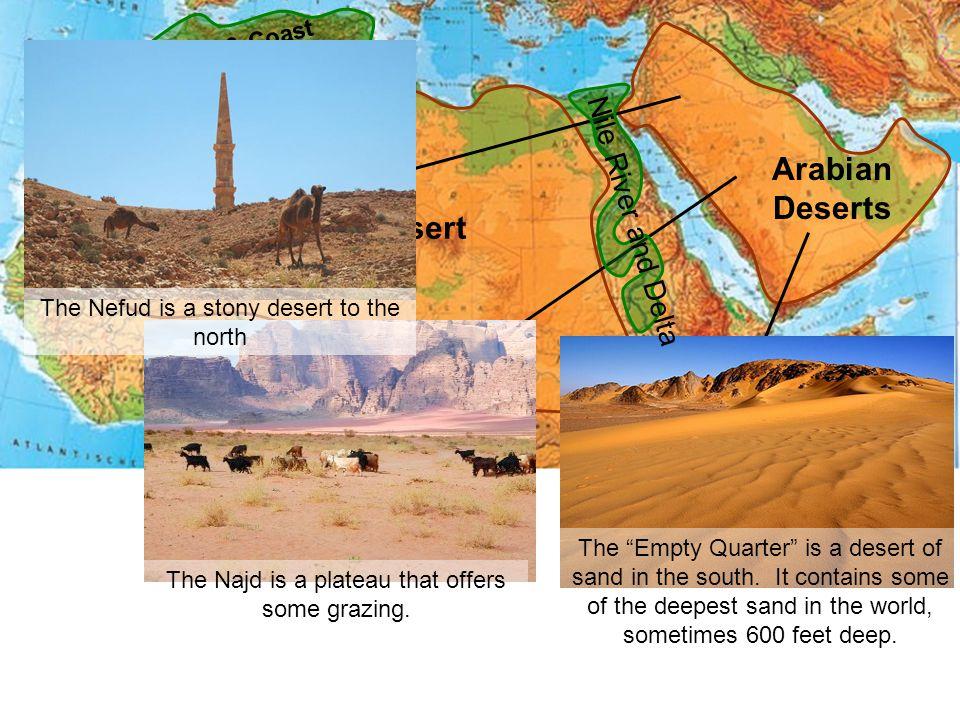 Arabian Deserts Sahara Desert
