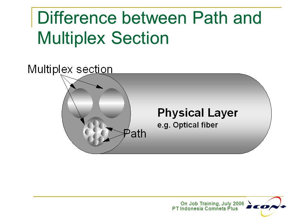 Difference between Path and Multiplex Section