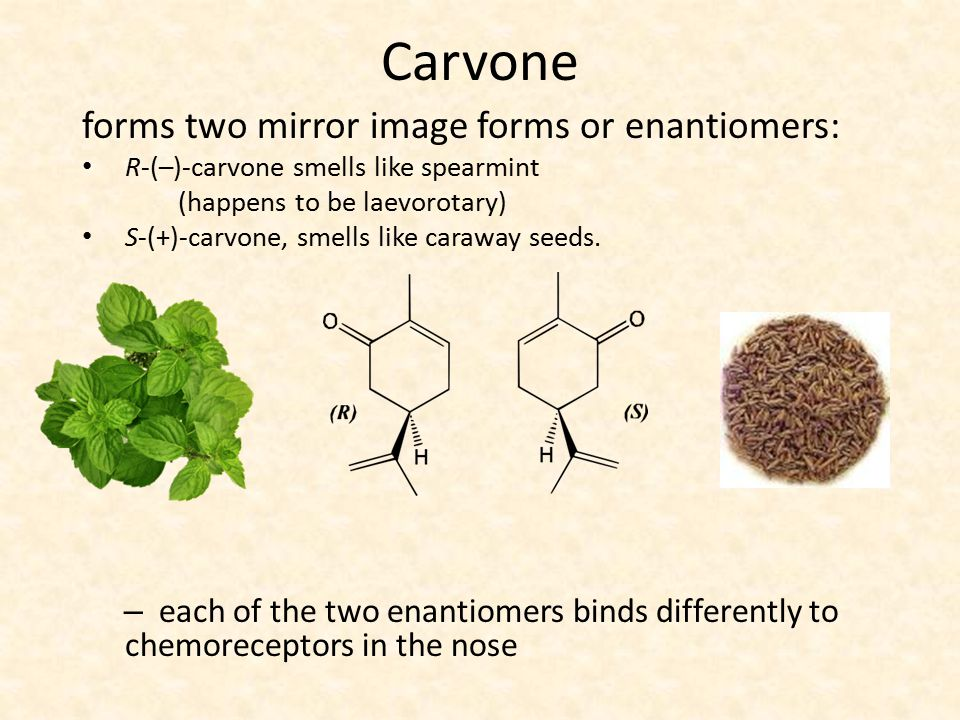 Carvone forms two mirror image forms or enantiomers: