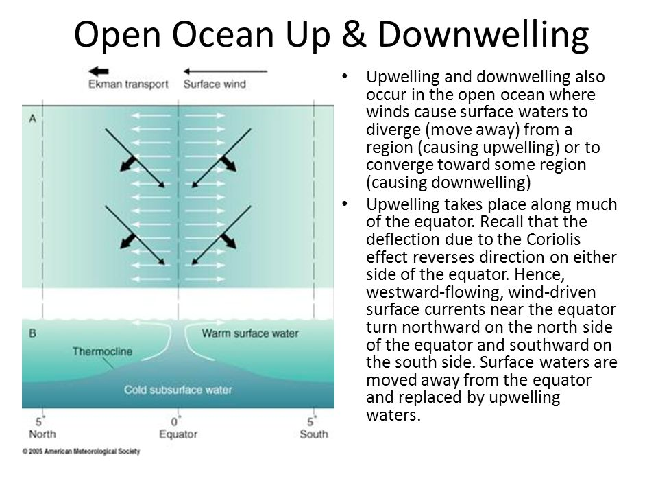 Open Ocean Up & Downwelling