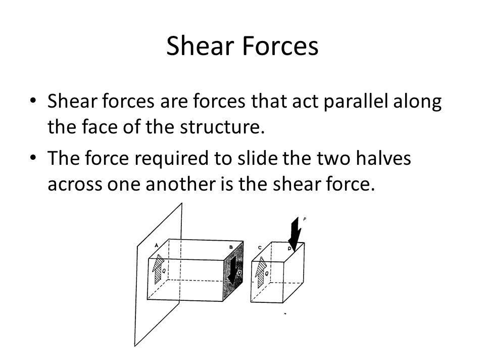 Shear Forces Shear forces are forces that act parallel along the face of the structure.