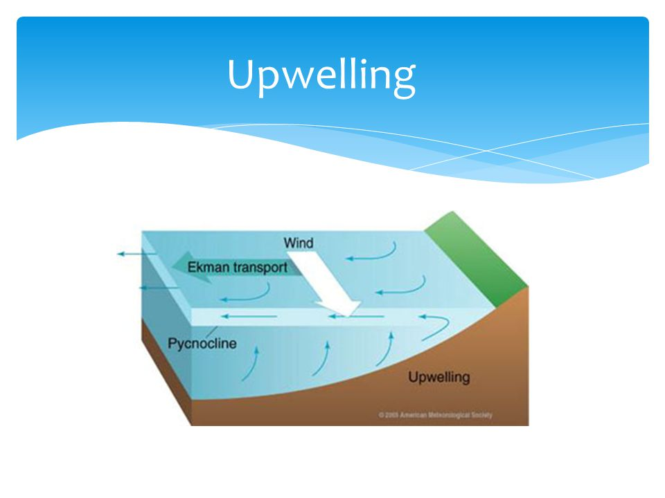 Upwelling http://oceanmotion.org/html/background/upwelling-and-downwelling.htm