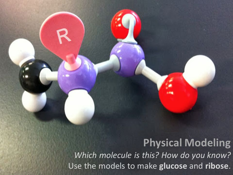 Physical Modeling Which molecule is this How do you know