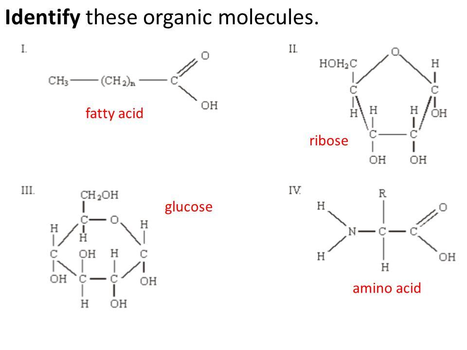 Identify these organic molecules.