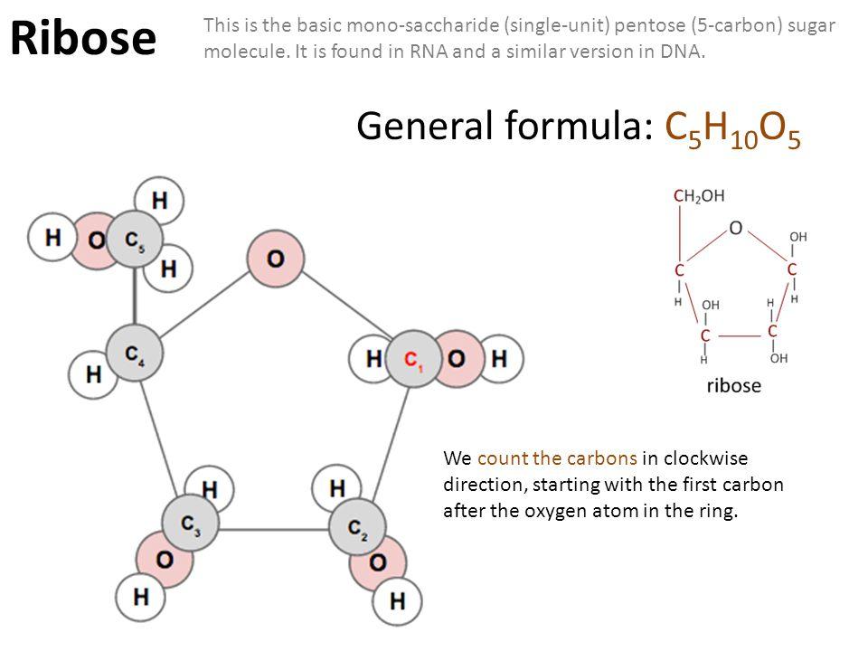 Ribose General formula: C5H10O5